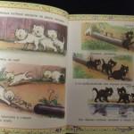 Самые любимые сказки В.Сутеева